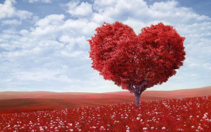 10 Επιστημονικά δεδομένα που πρέπει να ξέρεις για την αγάπη life coach μανώλης Ισχάκης nlp holistic result coaching