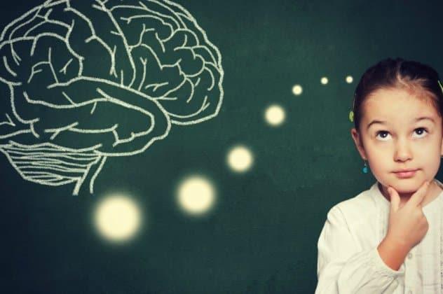 Πώς λειτουργεί ο εγκέφαλος